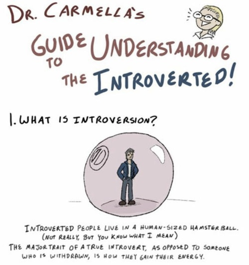 GuideToUnderstandingTheIntroverted-87361 crop 1